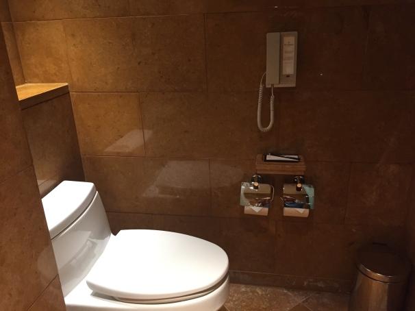 the toilet area