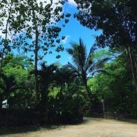 A Weekend Family Bonding with Nature @ Park, Rest & Dine